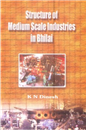 Structure of Medium Scale Industries in Bhilai